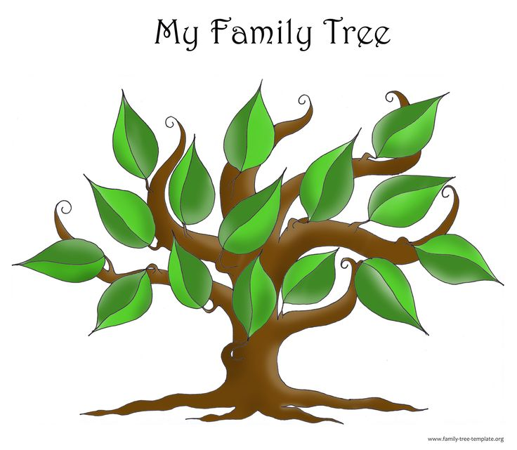Hands On Genealogy Class Wabasha Public Library